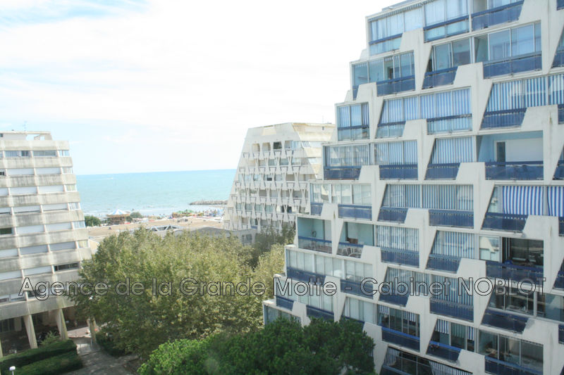Photo Studio La Grande-Motte Centre ville,   to buy studio  1 room   26m²