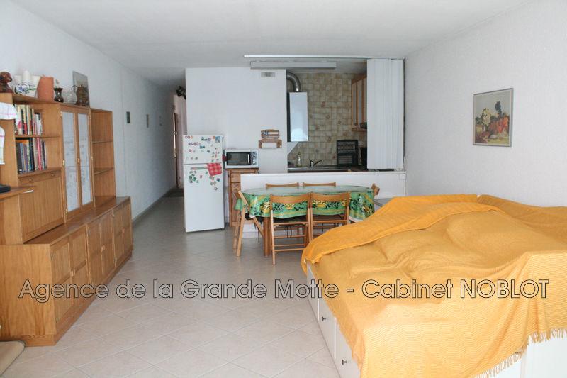 Appartement La Grande-Motte Centre ville,   achat appartement  2 pièces   48m²