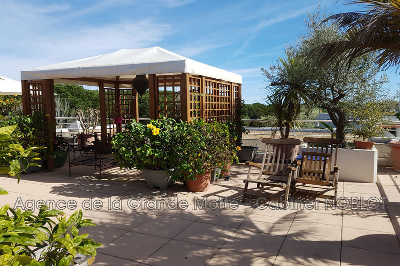 Apartment La Grande-Motte Golf,   to buy apartment  4 rooms   126 m²