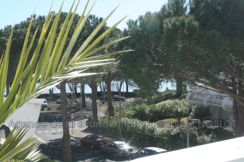 Photo Appartement La Grande-Motte Golf,   achat appartement  3 pièces   78m²