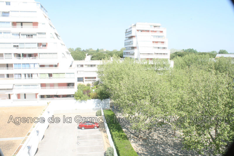 Appartement La Grande-Motte Centre ville,   achat appartement  1 pièce   20m²