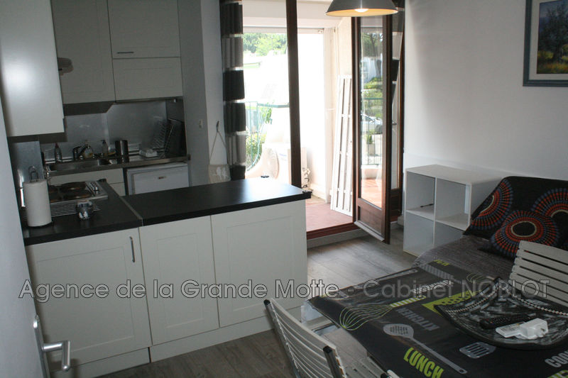 Photo Appartement La Grande-Motte Couchant,   achat appartement  2 pièces   35 m²