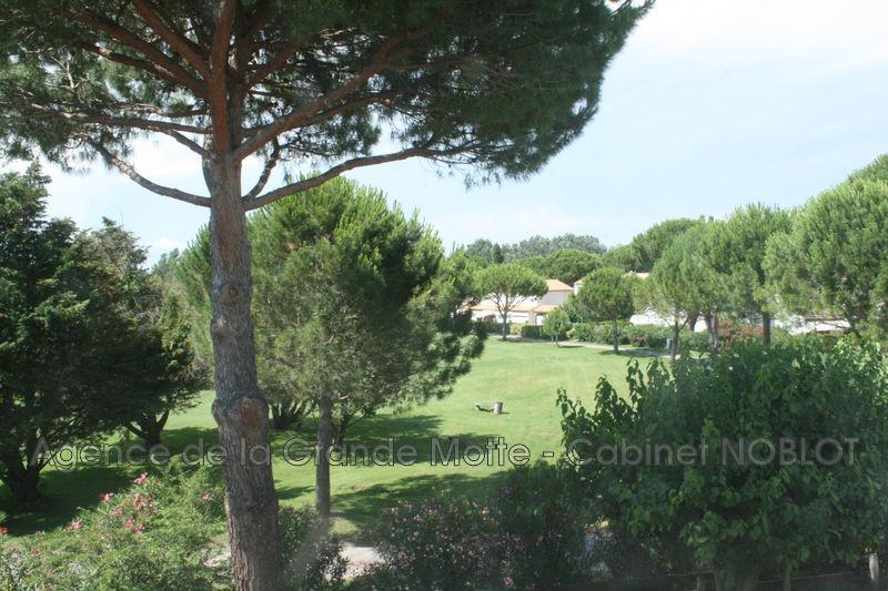 Photo Appartement La Grande-Motte Golf,   achat appartement  3 pièces   46m²