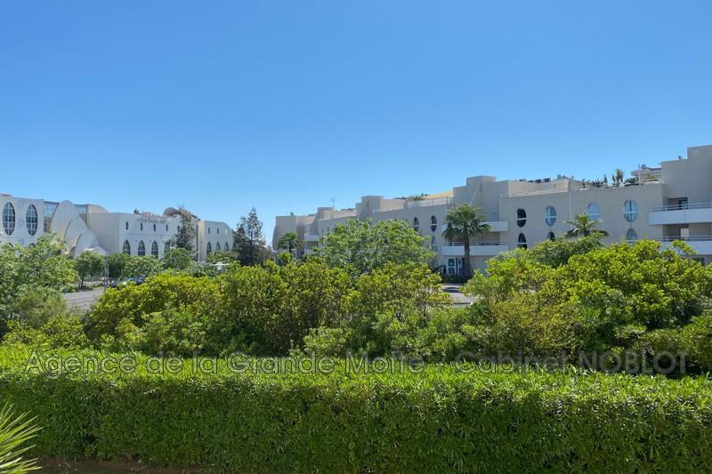 Photo Appartement La Grande-Motte Point zéro,   achat appartement  2 pièces   35m²