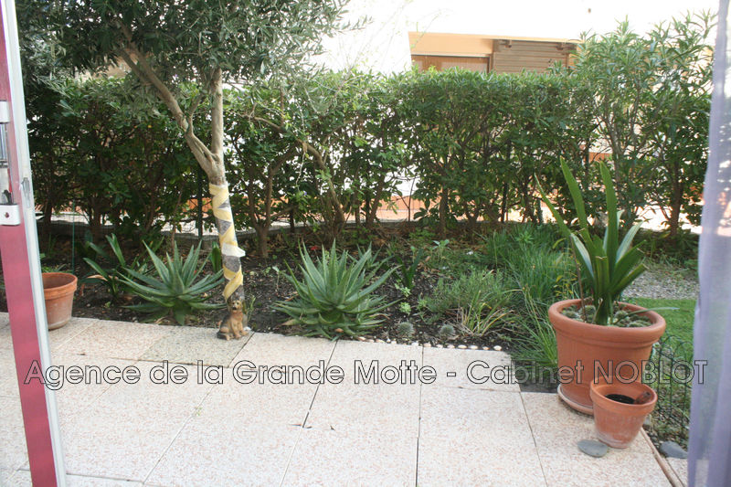 Photo Apartment La Grande-Motte Centre ville,   to buy apartment  1 room   16 m²