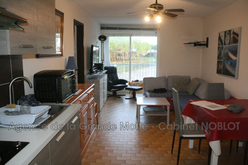 Photo Appartement La Grande-Motte Couchant,   achat appartement  2 pièces   29 m²