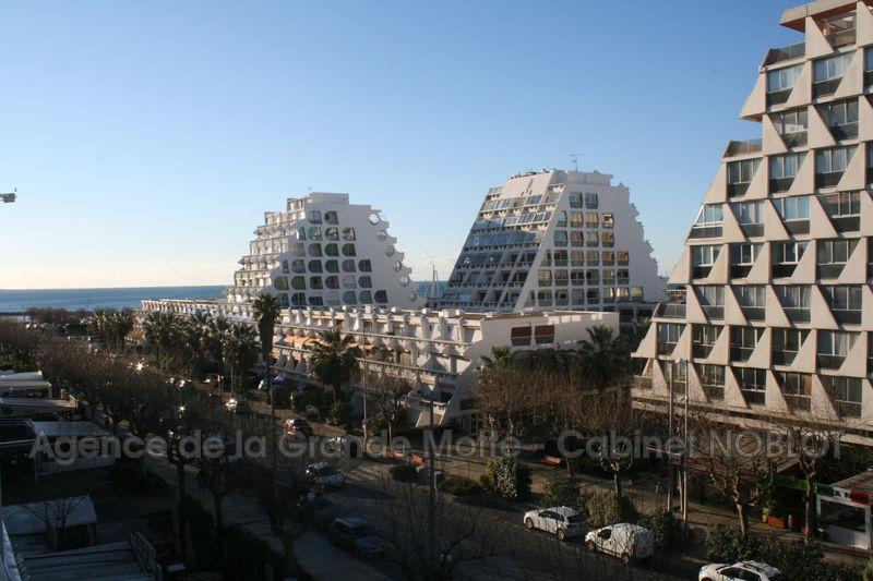 Photo Appartement La Grande-Motte Centre ville,   achat appartement  2 pièces   29m²