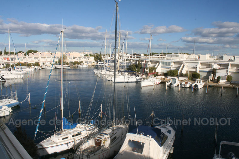 Photo Appartement marina Le Grau-du-Roi   to buy appartement marina  4 rooms   49 m²