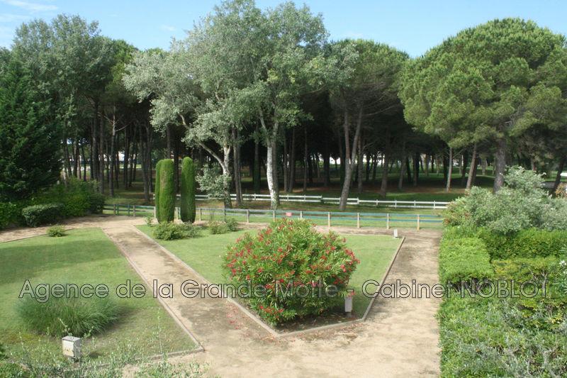 Photo Appartement La Grande-Motte Golf,   achat appartement  2 pièces   36m²