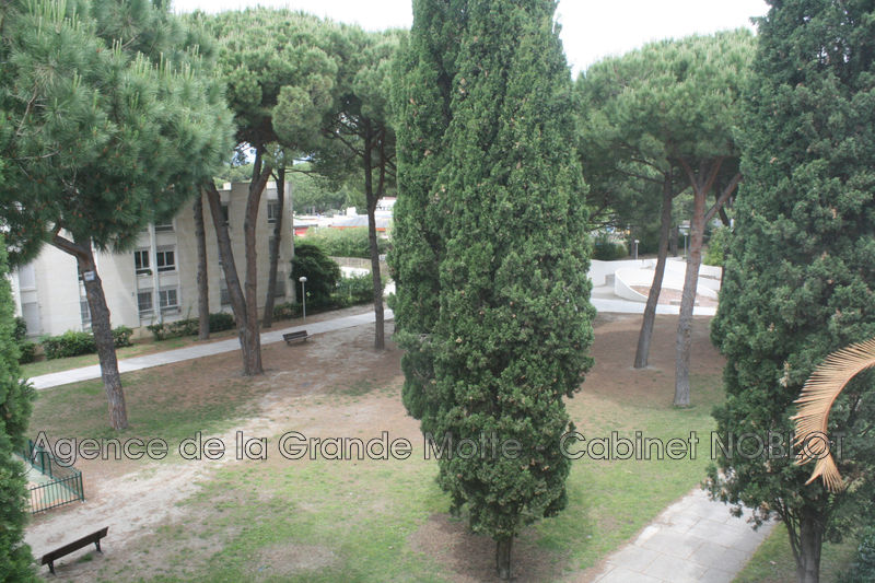 Photo Appartement La Grande-Motte Centre ville,   achat appartement  3 pièces   59m²