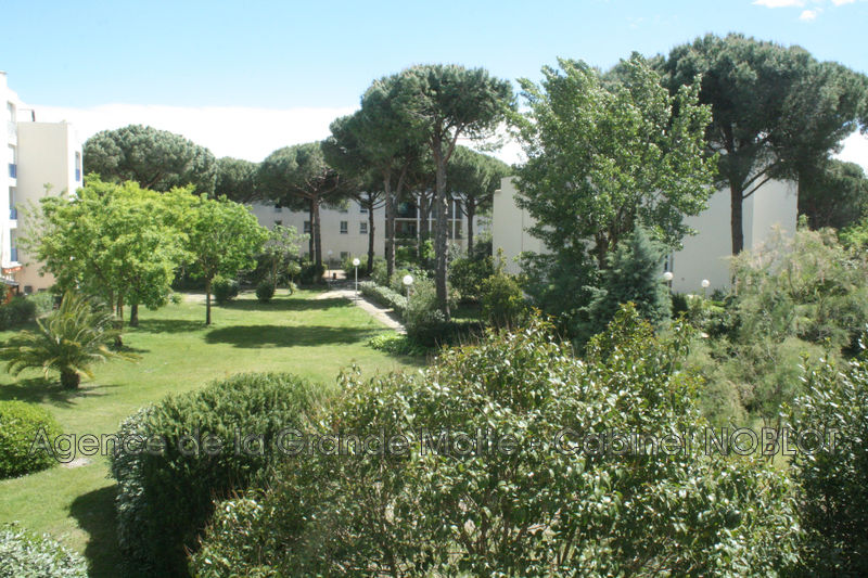 Photo Apartment La Grande-Motte Ponant,   to buy apartment  2 rooms   39 m²