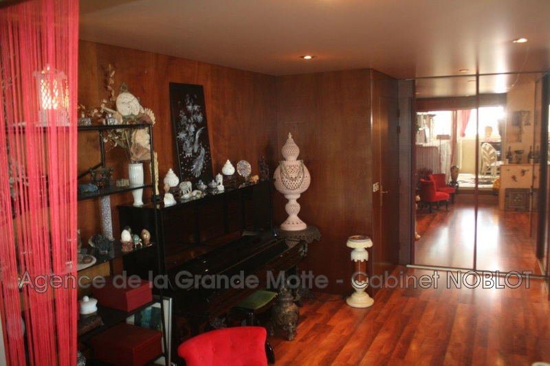Photo Appartement La Grande-Motte Couchant,   achat appartement  2 pièces   78 m²