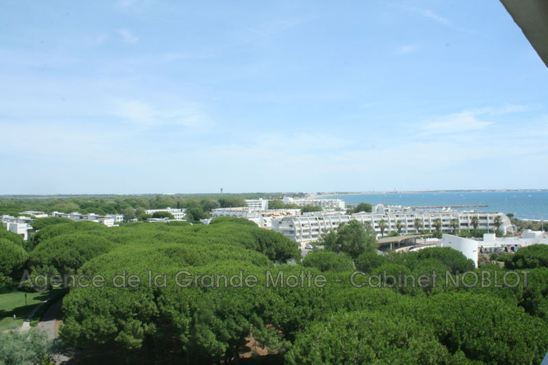 Apartment La Grande-Motte Centre ville,   to buy apartment  2 rooms   57 m²