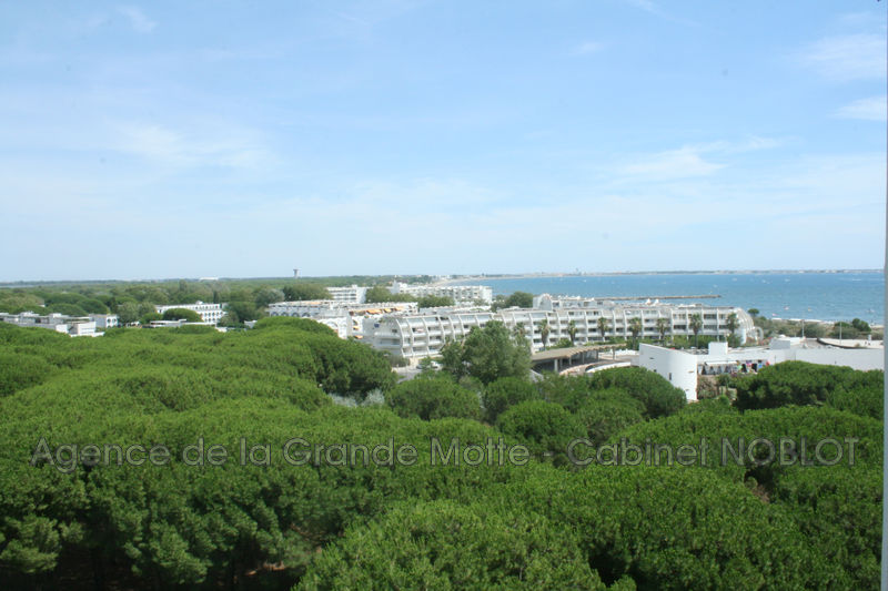 Photo Apartment La Grande-Motte Centre ville,   to buy apartment  2 rooms   57 m²