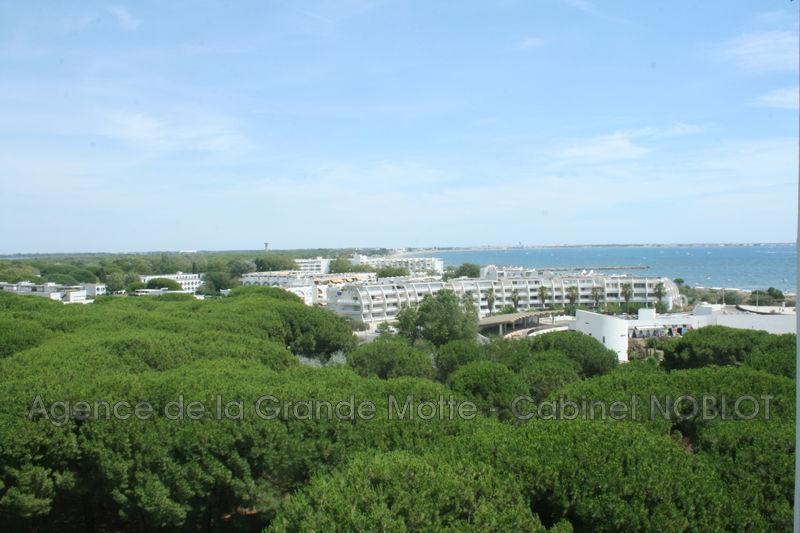 Appartement La Grande-Motte Centre ville,   achat appartement  2 pièces   57m²