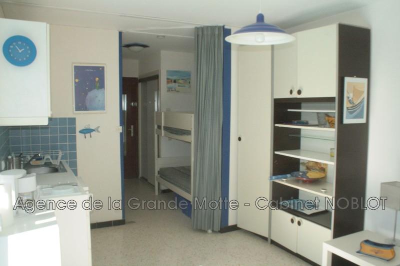 Studio cabine La Grande-Motte Centre ville,   achat studio cabine  1 pièce   24m²