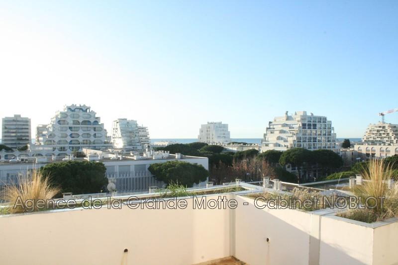 Appartement La Grande-Motte Centre ville,   achat appartement  3 pièces   50m²