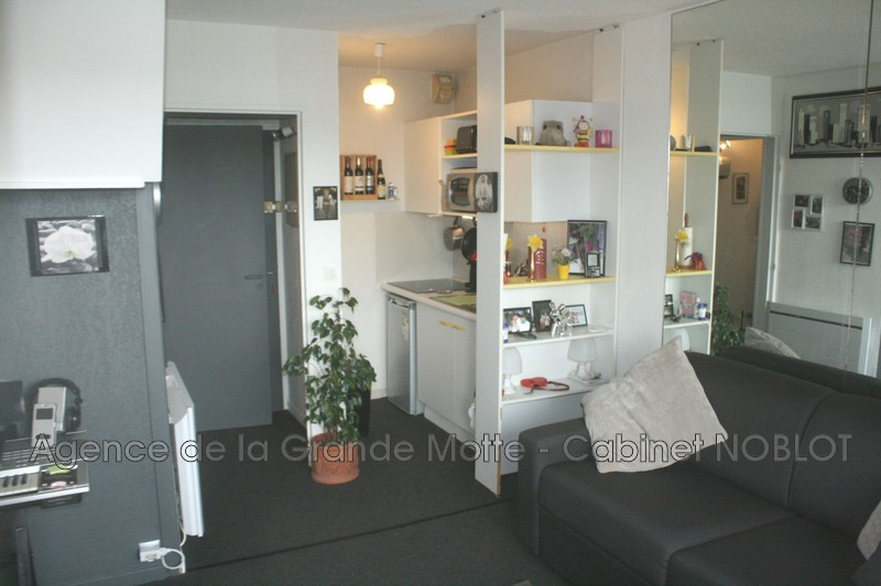 Photo Appartement La Grande-Motte Golf,   achat appartement  1 pièce   19m²