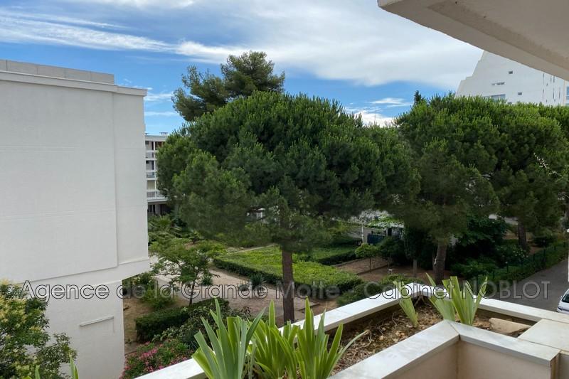 Apartment La Grande-Motte Centre ville,   to buy apartment  2 rooms   41m²