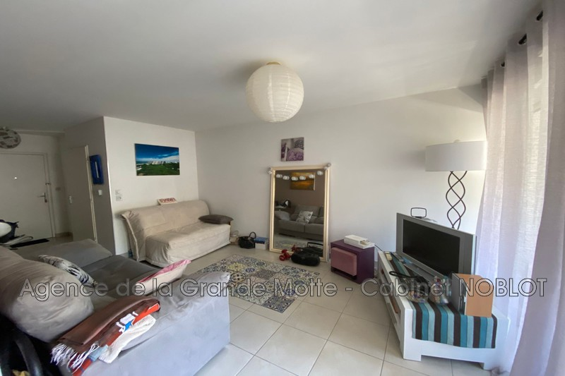 Appartement La Grande-Motte Point zéro,   achat appartement  2 pièces   60m²