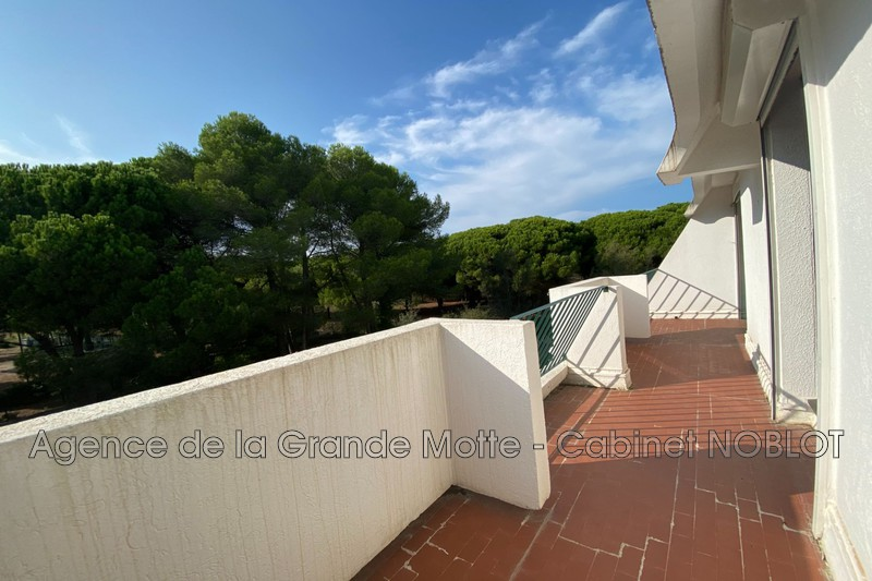 Photo Appartement La Grande-Motte Couchant,   achat appartement  2 pièces   34m²