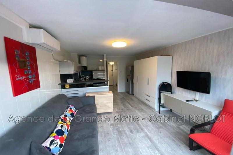 Photo Appartement La Grande-Motte Ponant,   achat appartement  1 pièce   23m²