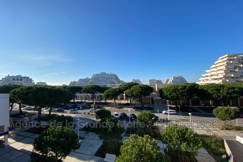 Appartement La Grande-Motte Centre ville,   achat appartement  2 pièces   47m²