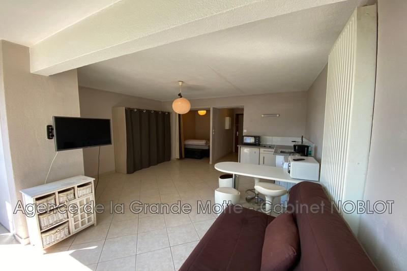 Photo Appartement La Grande-Motte Centre ville,   achat appartement  2 pièces   36m²