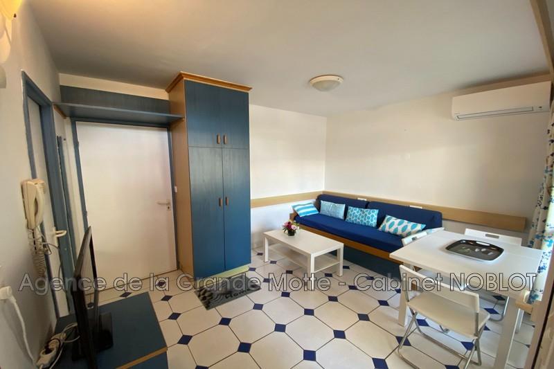 Appartement La Grande-Motte Centre ville,   achat appartement  2 pièces   23m²