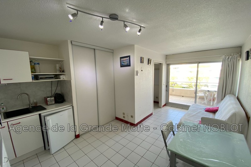 Studio cabine La Grande-Motte Couchant,   achat studio cabine  1 pièce   21m²
