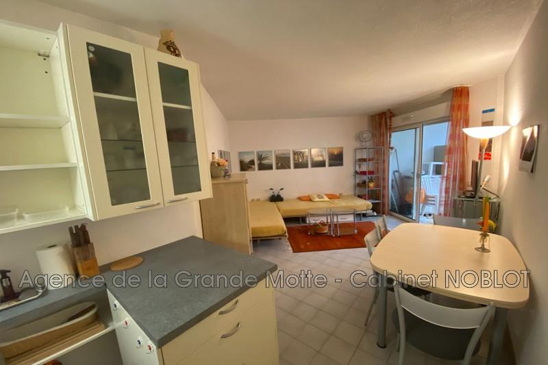 Photo Appartement La Grande-Motte Golf,   achat appartement  2 pièces   33m²