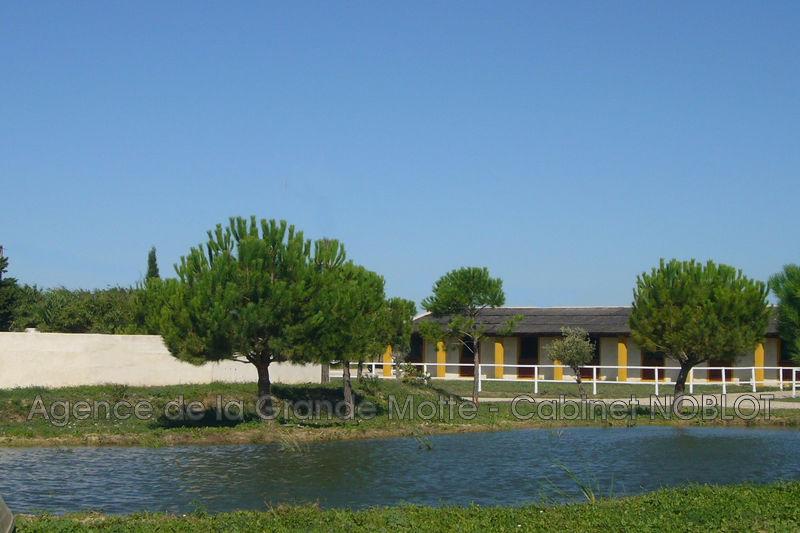 Propriété Aigues-Mortes   achat propriété  6 pièces   240m²