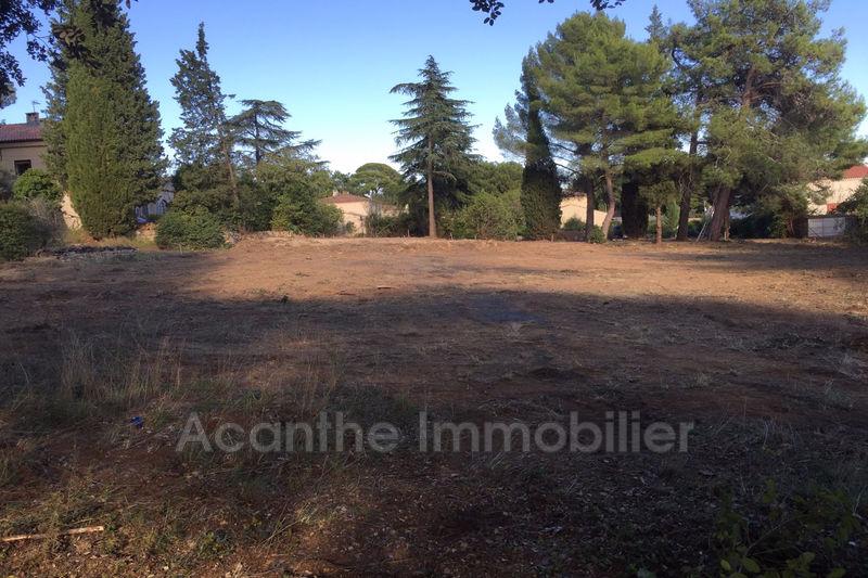 Photo Terrain Castelnau-le-Lez   achat terrain   1048m²
