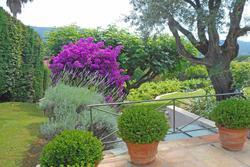 Location saisonnière villa provençale Saint-Tropez