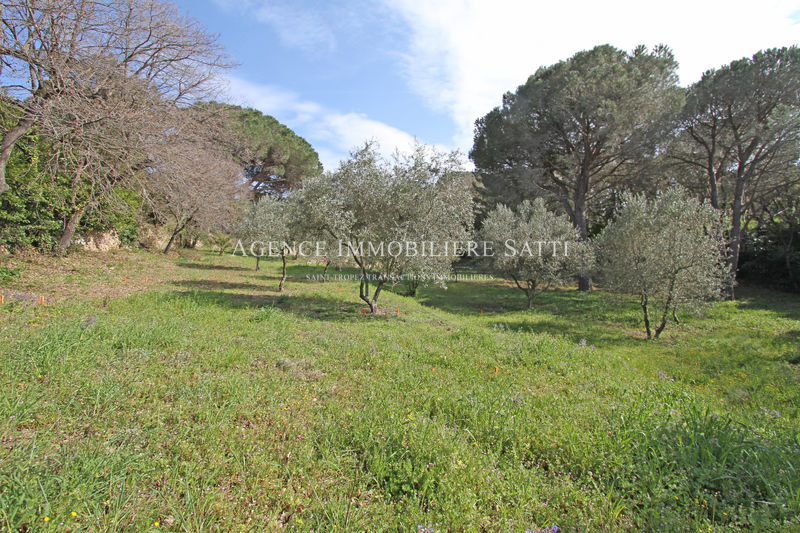 Photo Terrain Saint-Tropez   achat terrain   2155 m²