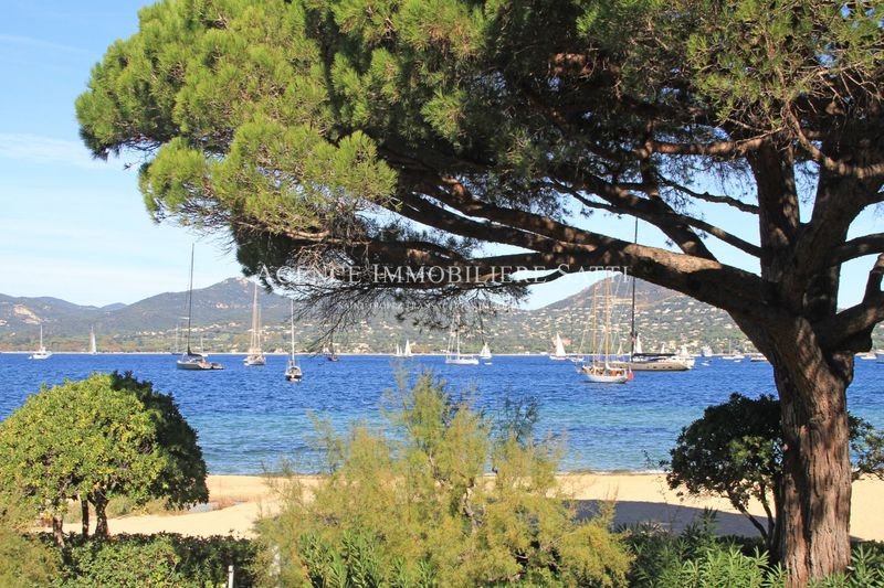 Photo Apartment Saint-Tropez   to buy apartment  2 rooms   56 m²