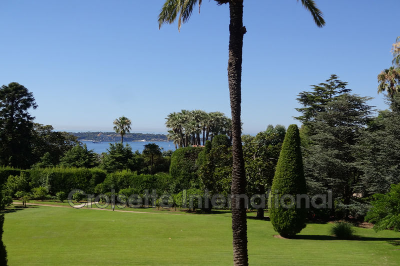 Photo Apartment Cannes Californie,   to buy apartment  3 rooms   95 m²