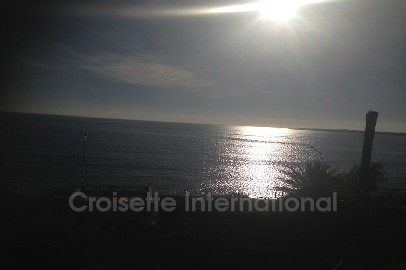 Photo Apartment Cannes Palm beach,   to buy apartment  3 rooms   80 m²