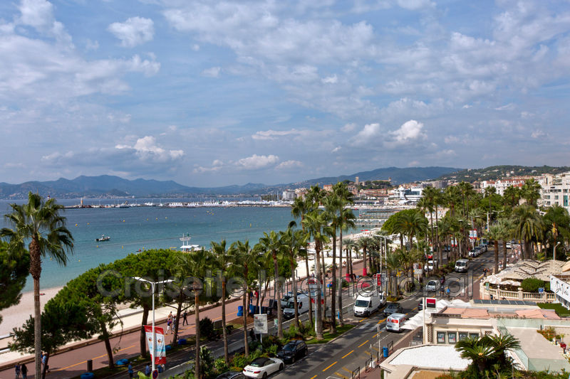 Photo Luxury apartment Cannes Croisette,   to buy luxury apartment  4 rooms   242 m²