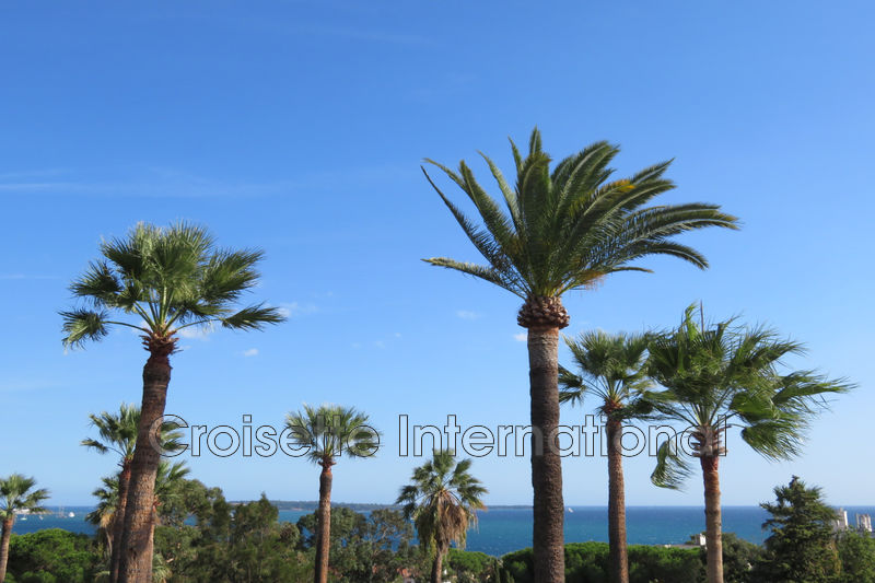 Photo Apartment Cannes Croix des gardes,   to buy apartment  3 rooms   109 m²