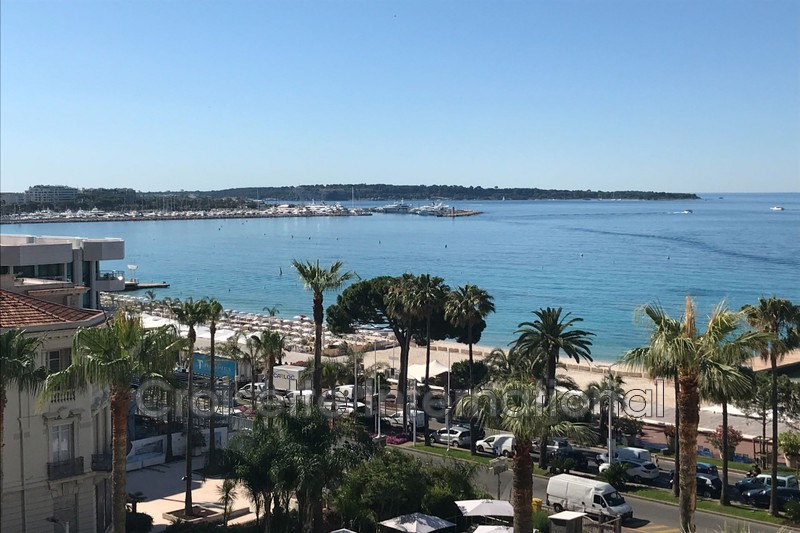Photo Apartment Cannes Croisette,   to buy apartment  3 rooms   65m²