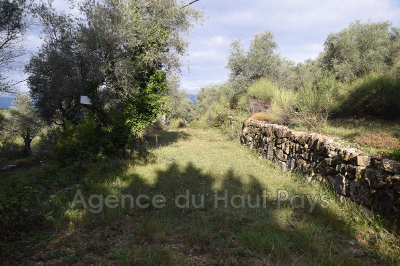 Land Saint-Cézaire-sur-Siagne Résidentiel,   to buy land   5981m²