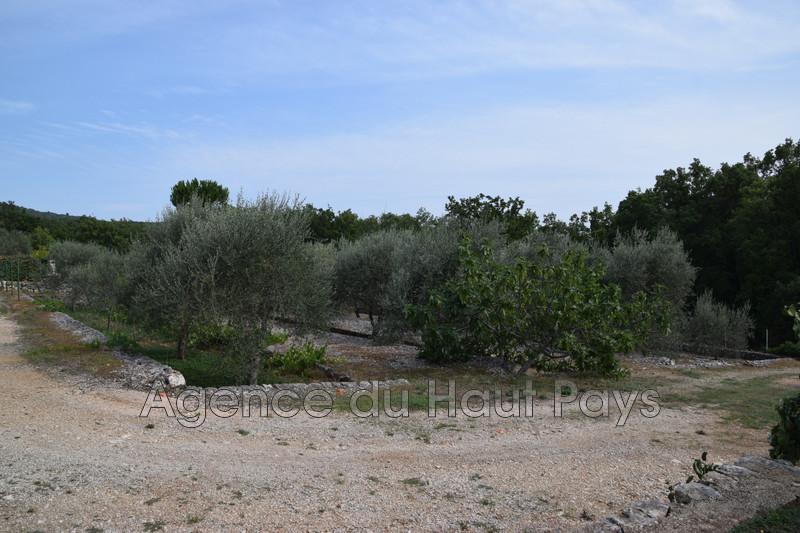 Photo Land Saint-Cézaire-sur-Siagne Bassins,   to buy land   1119m²