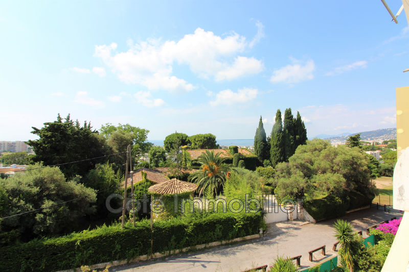 appartement  2 pièces  Antibes Antibes ouest  50m² -