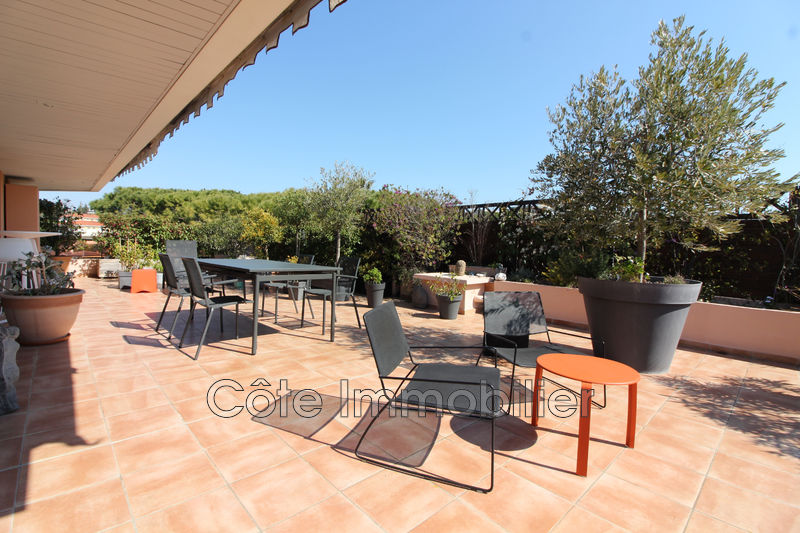 appartement  4 rooms  Antibes Antibes west  98m² -
