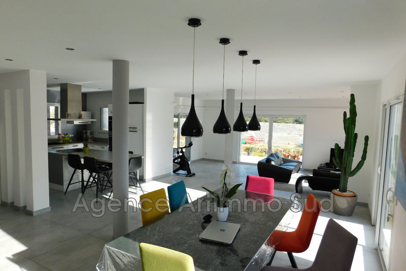 Photo Maison contemporaine Aureille Village,   achat maison contemporaine  5 chambres   180 m²