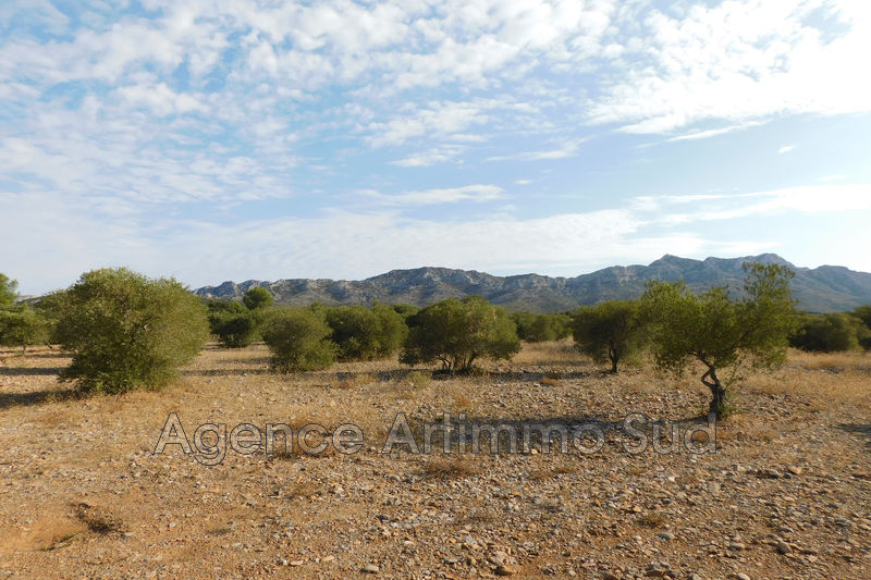 Photo Agricultural land Aureille Ceinture verte village,   to buy agricultural land   17000 m²