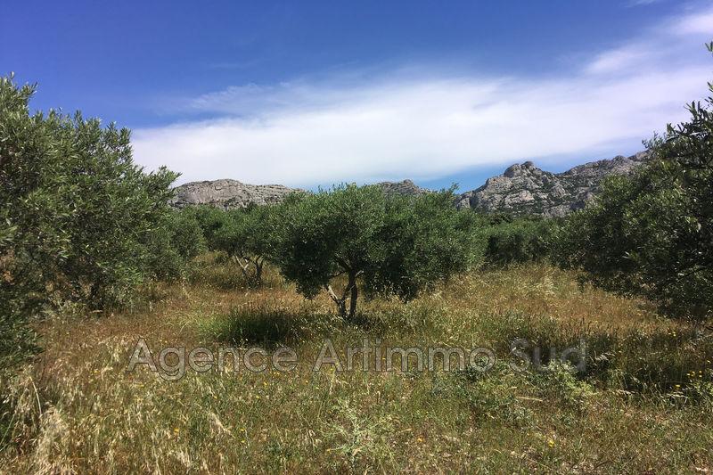 Photo Terrain agricole Aureille Ceinture verte village,   achat terrain agricole   10000m²