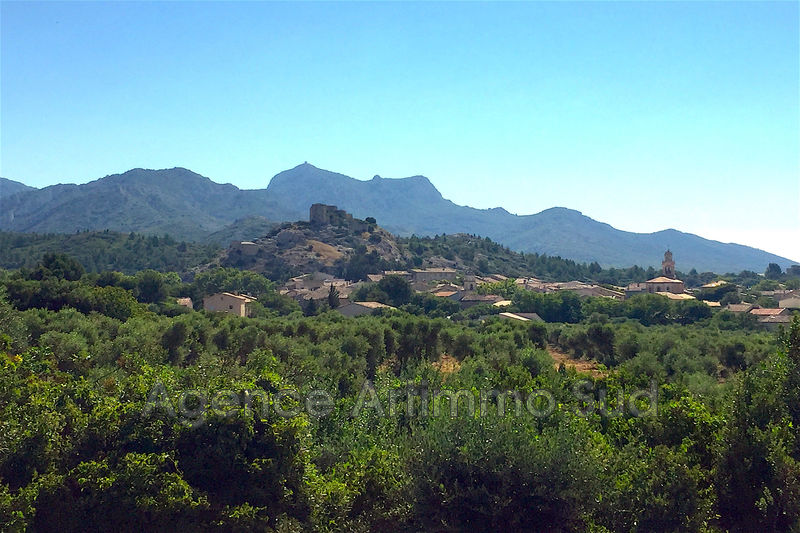 Photo Terrain Aureille Village,   achat terrain   400 m²