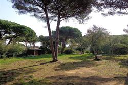 Vente terrain constructible Sainte-Maxime Dsc00295
